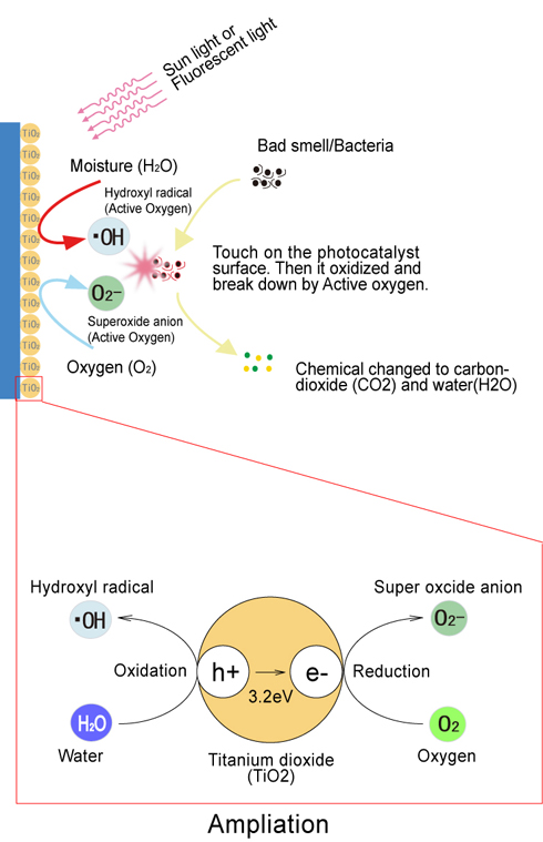 Photocatalyst decomposed effect